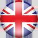 Switch language to English